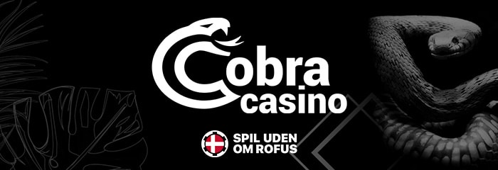 cobra recension spiludenomrofus